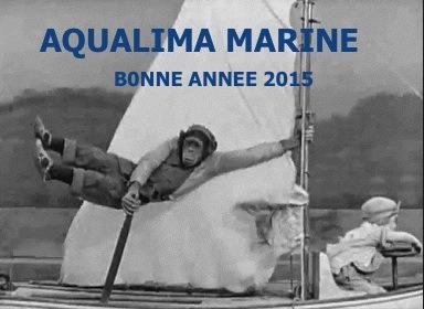 BONNE ANNEE 2015 aqua